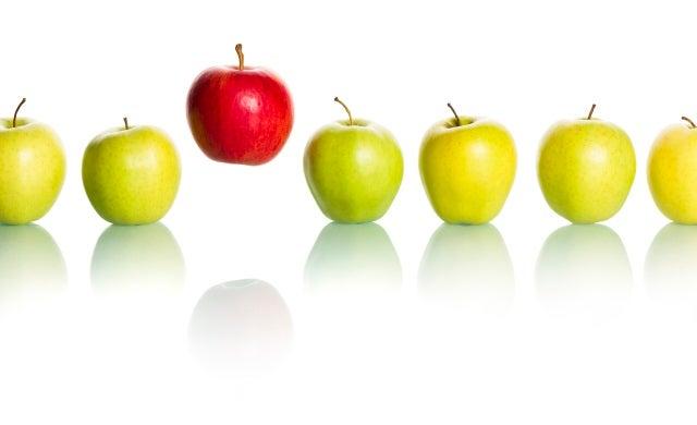 Start-up business plan essentials: Creating a USP