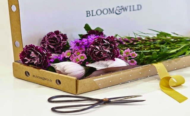 Bloom & Wild raises £2.5m for 'flowers through the letterbox' service