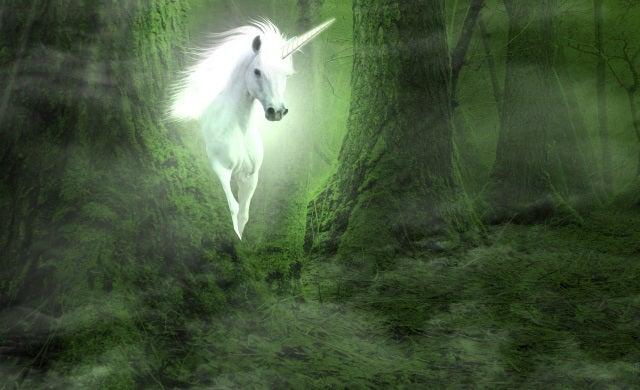 Unicorns How Do You Become A Billion Dollar Start Up