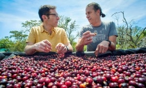 The Entrepreneur: Jeremy Torz, Union Hand-Roasted Coffee