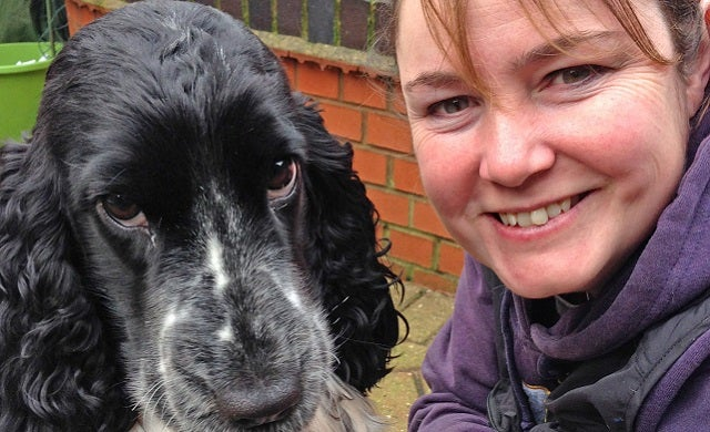 How to start a pet sitting and dog walking business: The insider's view