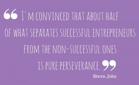 I'm convinced that about half of what separates successful entrepreneurs from the non-successful ones is pure perseverance.