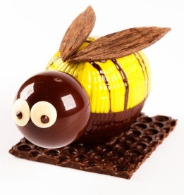 Oli The Chocolate Bee.resize