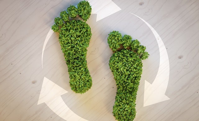 3 current eco-friendly trends that will make your business stand out