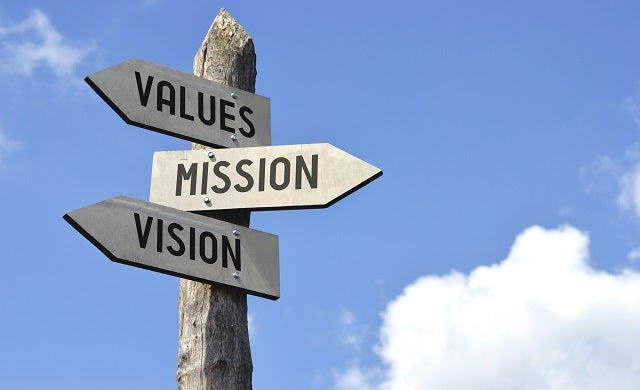 Vision: Why some start-ups succeed and others don't