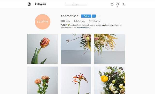 Floom Instagram