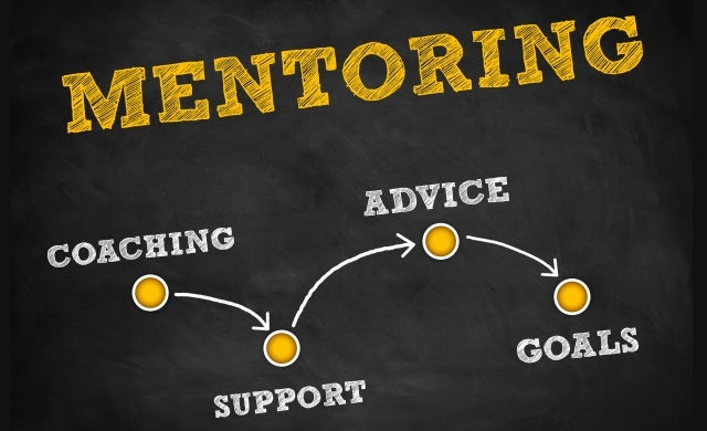 How your start-up can get the most out of a mentor