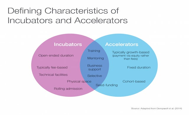 Incubator and accelerator characteristics