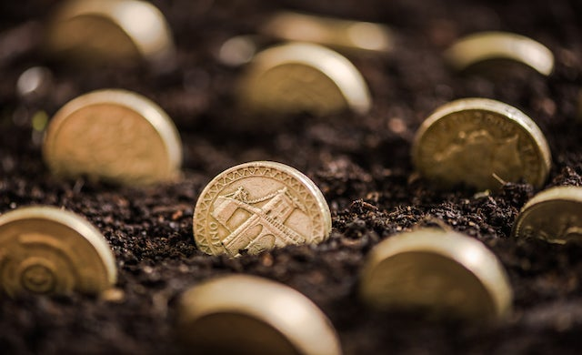 Coins in dirt