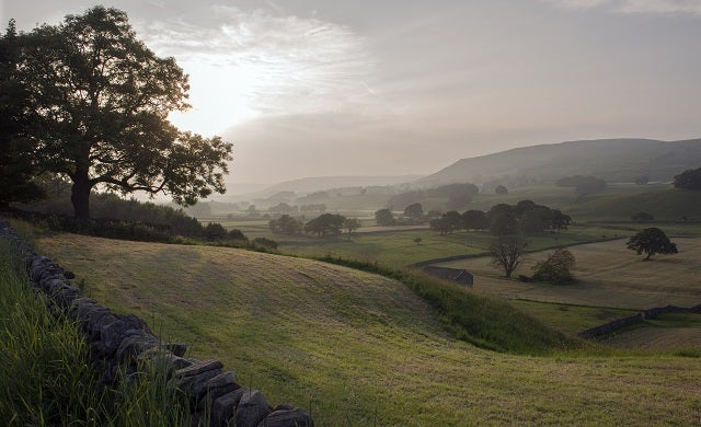 Struggling to come up with a business idea? Head to the countryside…
