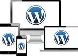 Wordpress Website Costs