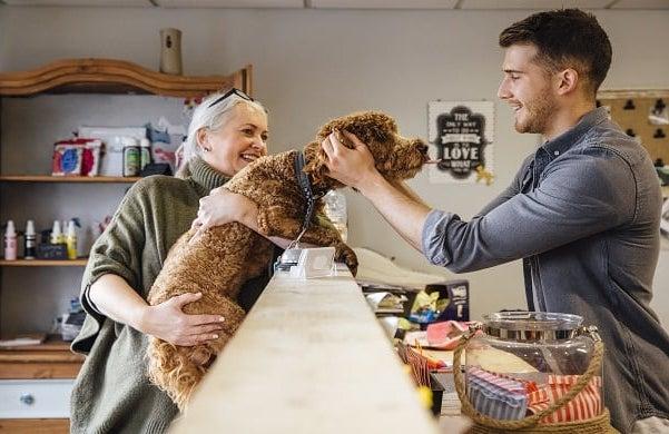 Dog-groomer-business