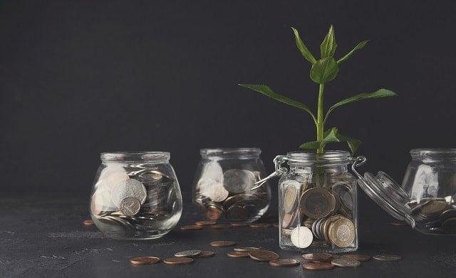 Jars coins plants
