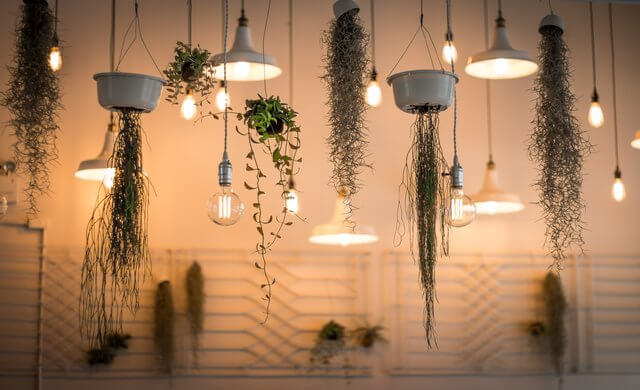 macrame and houseplants