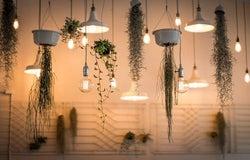 macrame and houseplants