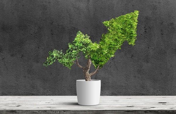 how to run a carbon neutral business