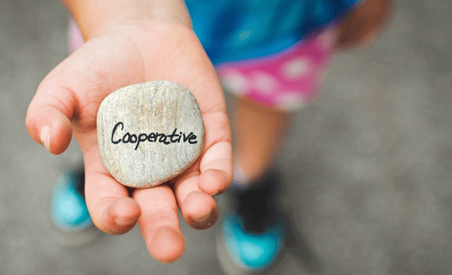 What is a startup cooperative business?