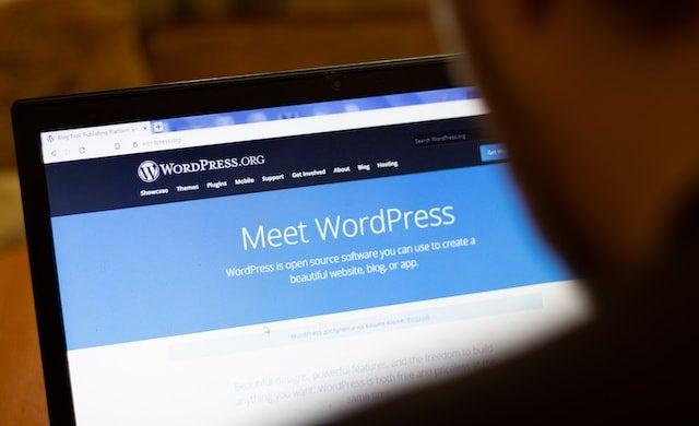Man using WordPress