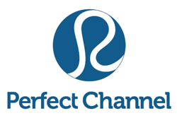 Digital Business of the Year Finalist 2013: Perfect Channel