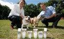 Simon Duffy and Rhodri Ferrier: Bulldog Natural Grooming